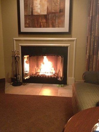 Homewood Suites by Hilton Chicago Schaumburg:                   cozy fireplace