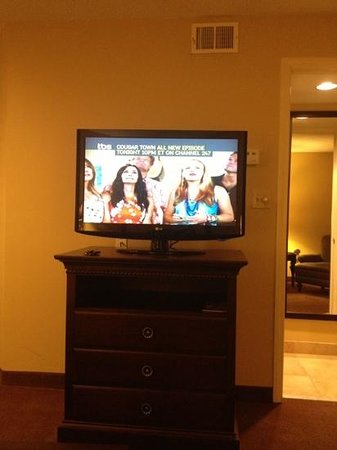 Homewood Suites by Hilton Chicago Schaumburg :                   large tv