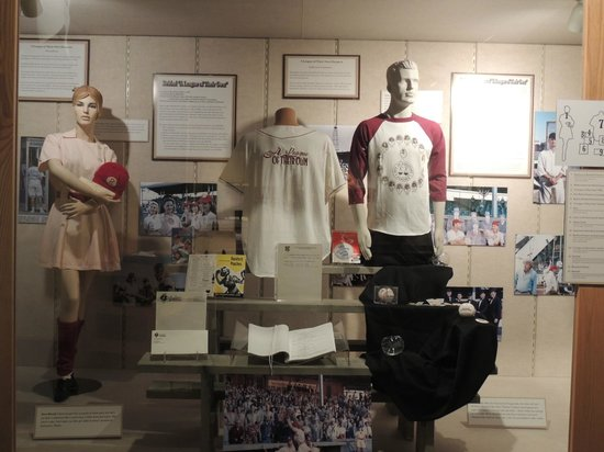 The History Museum: display