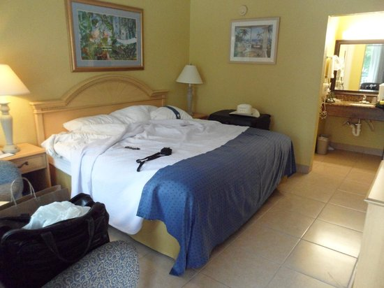 Wyndham Garden Fort Myers Beach: My room
