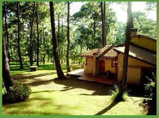 Sierra Vista Cabanas Mazamitla: SIerra Vista Cabañas Mazamitla