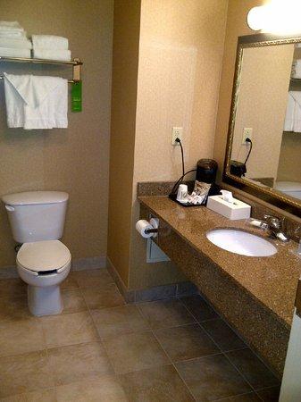 Hampton Inn And Suites Montreal :                   Clean bathroom