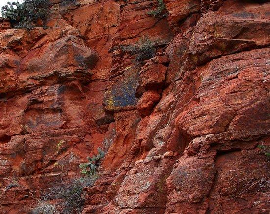 Lost Canyon Trail: Long Canyon Trail #122, Sedona, Arizona