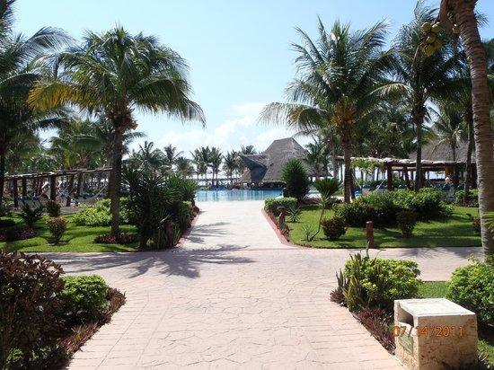 Barcelo Maya Tropical:                   Pool view
