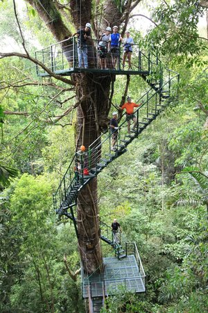 El Santuario Canopy Adventure Tour & El Santuario Canopy Adventure Tour (Manuel Antonio) - All You Need ...