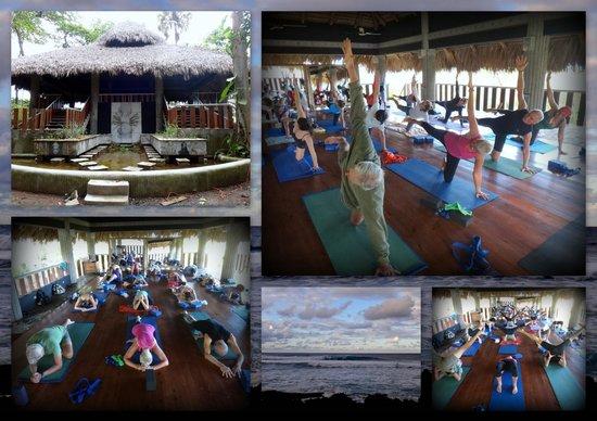 CabareteYoga: Cabarete Yoga with Kieran!