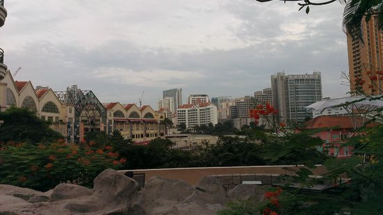 Swissotel Merchant Court Singapore:                   view from pool