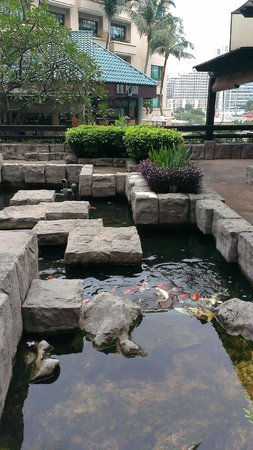 Swissotel Merchant Court Singapore:                   pool area