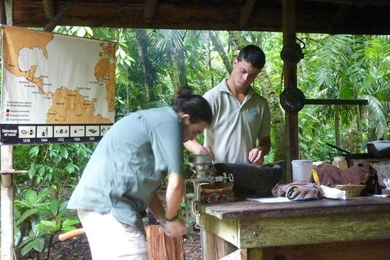 ‪‪Tirimbina Biological Reserve‬: Grinding roasted coffee bean