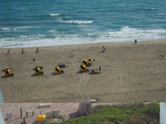 Hilton Singer Island Oceanfront/Palm Beaches Resort:                   beachfront hotel