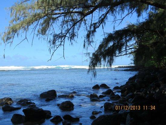 Kauai Beach Resort:                   Another fabulous beach!