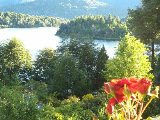 Bellevue Bed & Breakfast: Bellevue y sus rosas