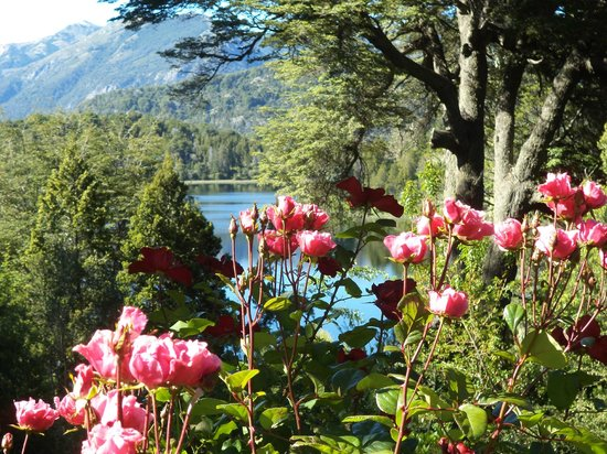 Bellevue Bed & Breakfast: Lago Moreno