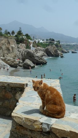 Hostal Marissal: One of the beaches of Nerja