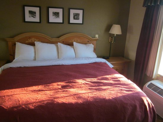 Country Inn & Suites By Carlson, Galesburg: comfortable king bed