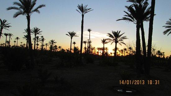 Ryad Mogador Kasbah: Marrakech la palmeraie
