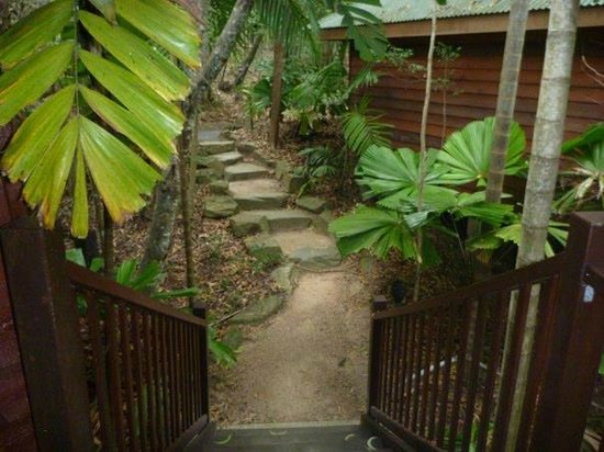 Thala Beach Nature Reserve:                   Stairs and path leading to our balcony.