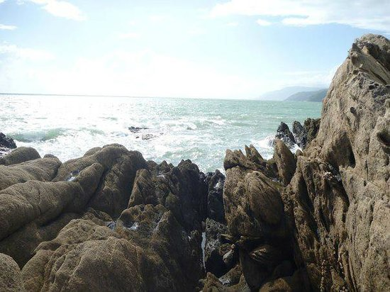 Thala Beach Nature Reserve:                   Beautiful rock formations on the beach.