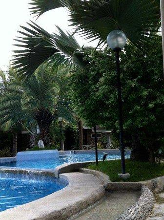 Blue Coral Beach Resort:                   poolside