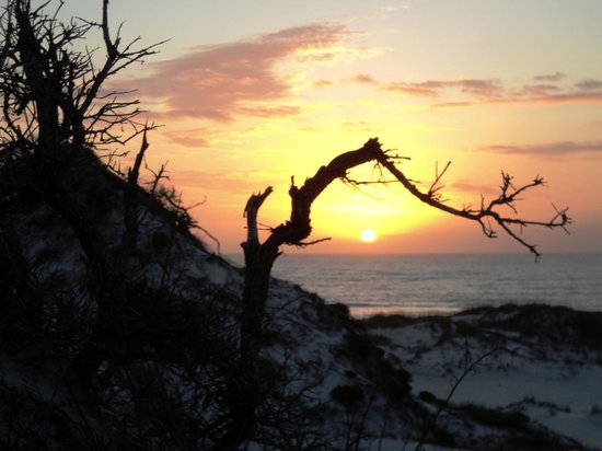St. Joseph Peninsula State Park照片