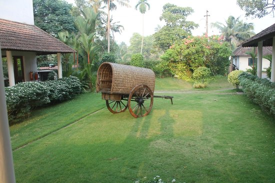 Lemon Tree Vembanad Lake Resort:                   Hotel Lawn