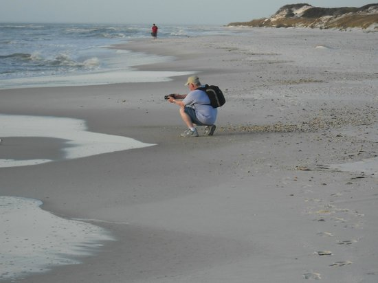 St. Joseph Peninsula State Park: Remote beach