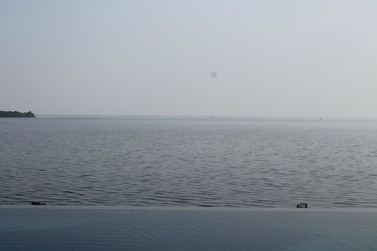 เลมอน ทรี เว็มบานาด เลค รีสอร์ท มูฮัมมา:                   Pool merging with the lake