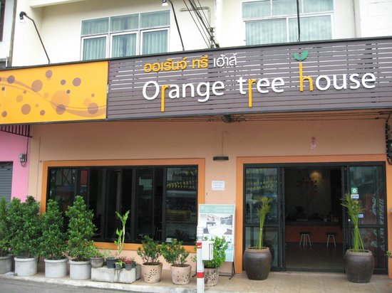 Orange Tree House: Eingang