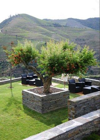 Quinta do Pego: Gardens