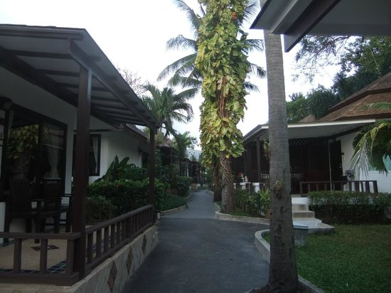 Chaweng Cove Beach Resort: viale per laspiaggia