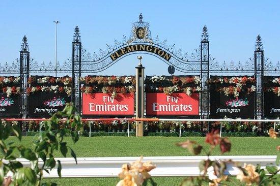 Melbourne Sports Tours:                   The finishing line at Flemington Race Course