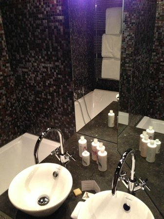 Canal House:                   The bathroom