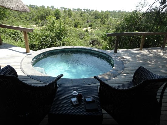 Londolozi Private Game Reserve:                   Private room pool