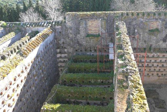 El Palomar de la Breña:                   dovecote