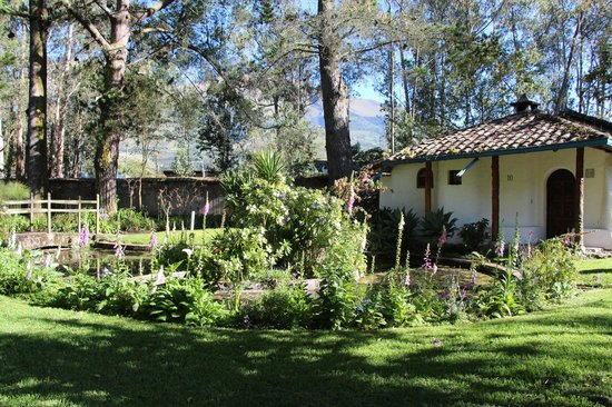 Hacienda Cusin:                   cottage in garden