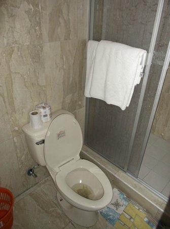 Hotel Residencial Cibeles: Chambre 215 - Salle de bain au 14 janvier 2013.