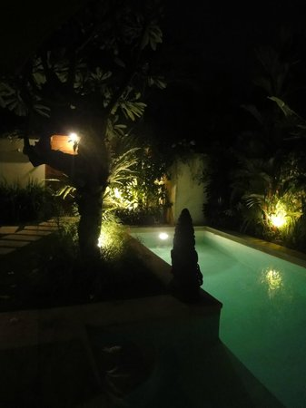 Dyana Villas:                   Beautiful pool and gardens