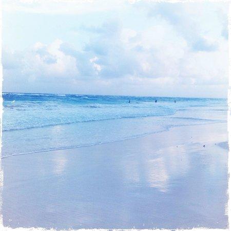 Amansala Eco-Chic Resort + Retreat:                                     Beach