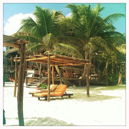 Amansala Eco-Chic Resort + Retreat:                                     Amansala beach