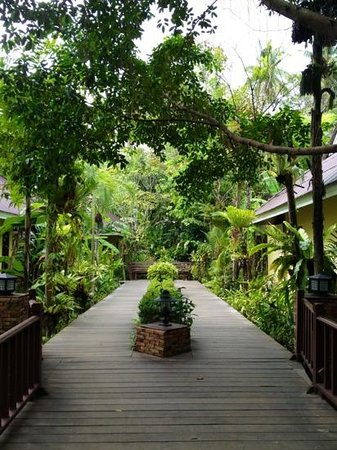 Sunda Resort:                   pathway