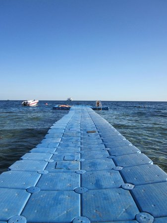 Sharks Bay Umbi Diving Village:                   Floating jetty... Great snorkelling from the end!