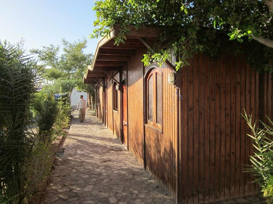 Sharks Bay Umbi Diving Village:                   Beach huts 1 - 3