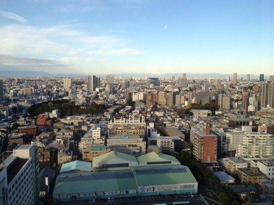Shinjuku Prince Hotel: good view of the city