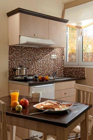 Kastro Beach Apartments: Superior Studio for 3 Kitchen