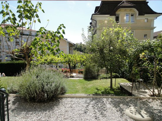 Lausanne Guesthouse & Backpacker: Terrace and garden