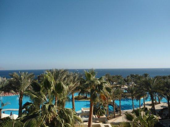 Grand Rotana Resort & Spa : Hotel