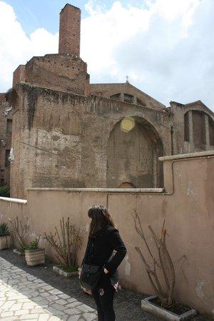 Basilica di Santa Maria degli Angeli e dei Martiri: exterior from the behind
