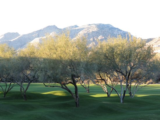 Lodge at Ventana Canyon:                   Mountain view from room