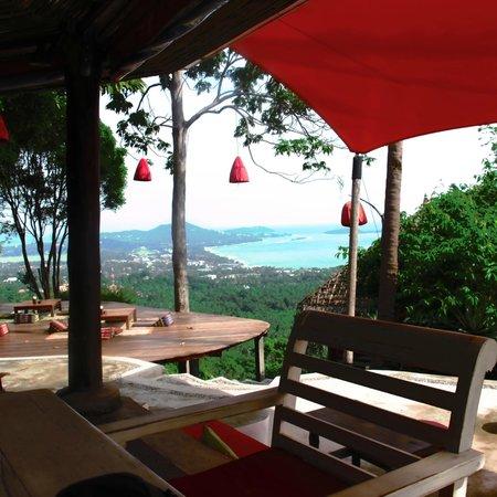 Jungle Club:                   restaurant