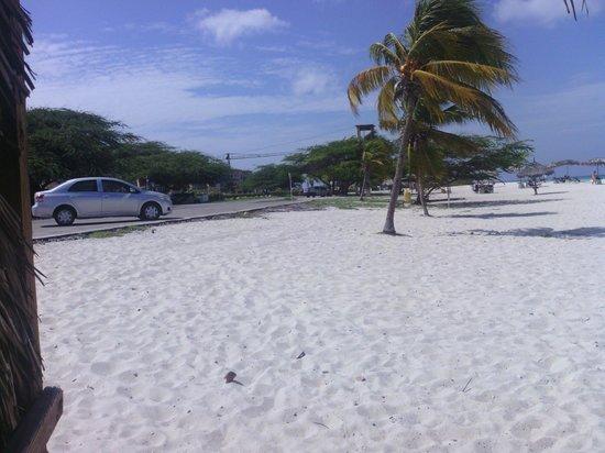 MVC Eagle Beach: Eagle Beach